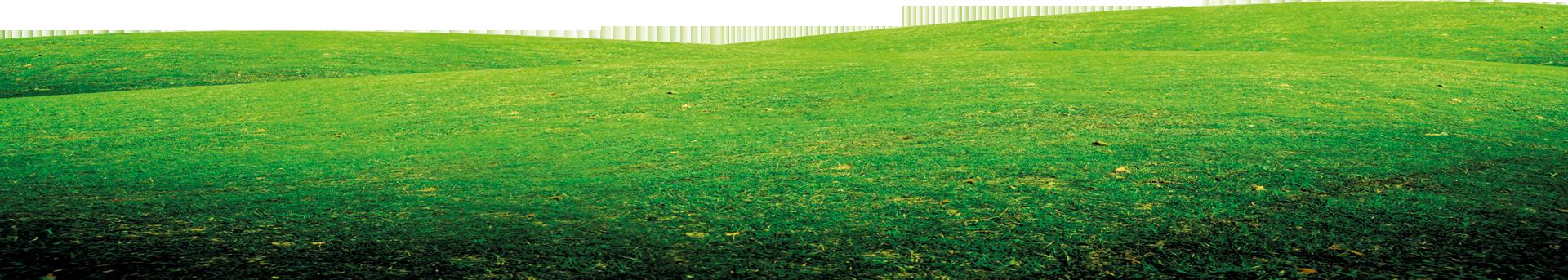 Entretien chaudi re particulier et professionnel annecy for Tarif entretien pelouse